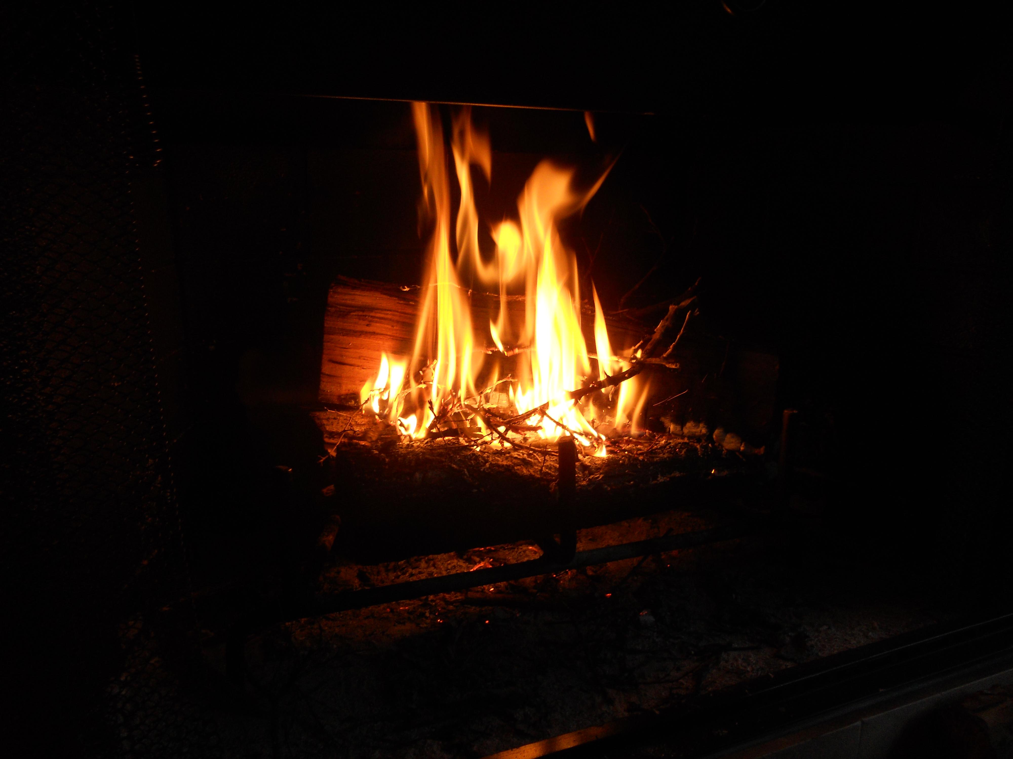 Woodsman Sarah, Or, I Learned to Build a Fire | A Wife Loved Like ...
